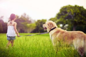 girl with dog in field