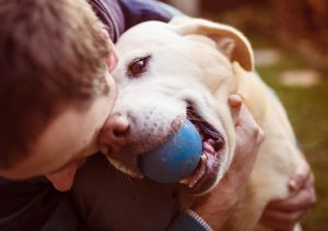 dog-with-owner-and-ball-in-his-mouth
