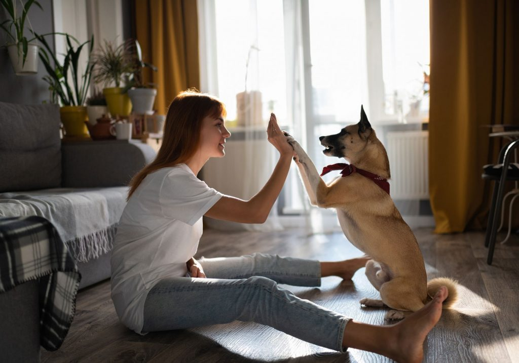 happy dog with owner after getting treat