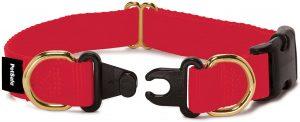 Safety Collar