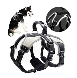 Mihachi Escape Proof Secure Dog Harness